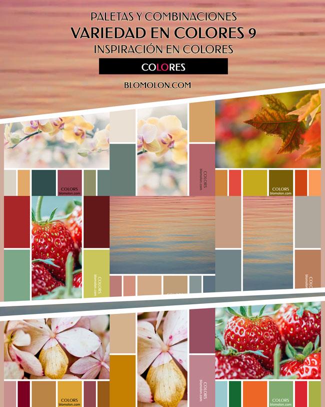 variedad_en_color_blomolon_-3