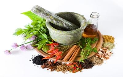 Lima Tanaman Herbal Penurun Kadar Asam Urat