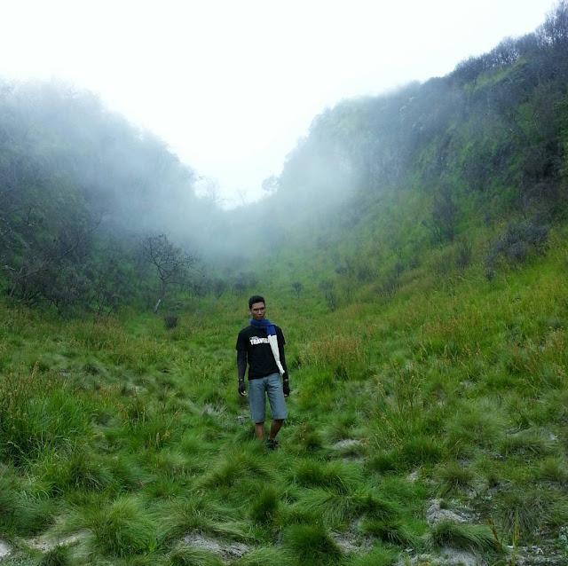 foto sabana di gunung lawu