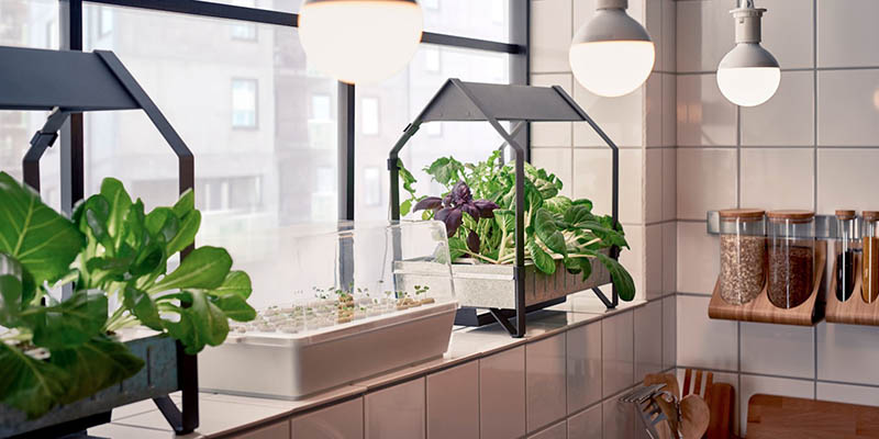 Space-Saving Ways to Grow an Herb Garden