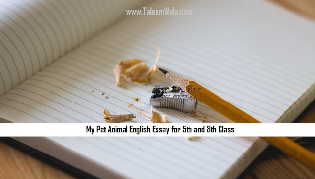 My Pet Animal English Essay for 5th and 8th Class