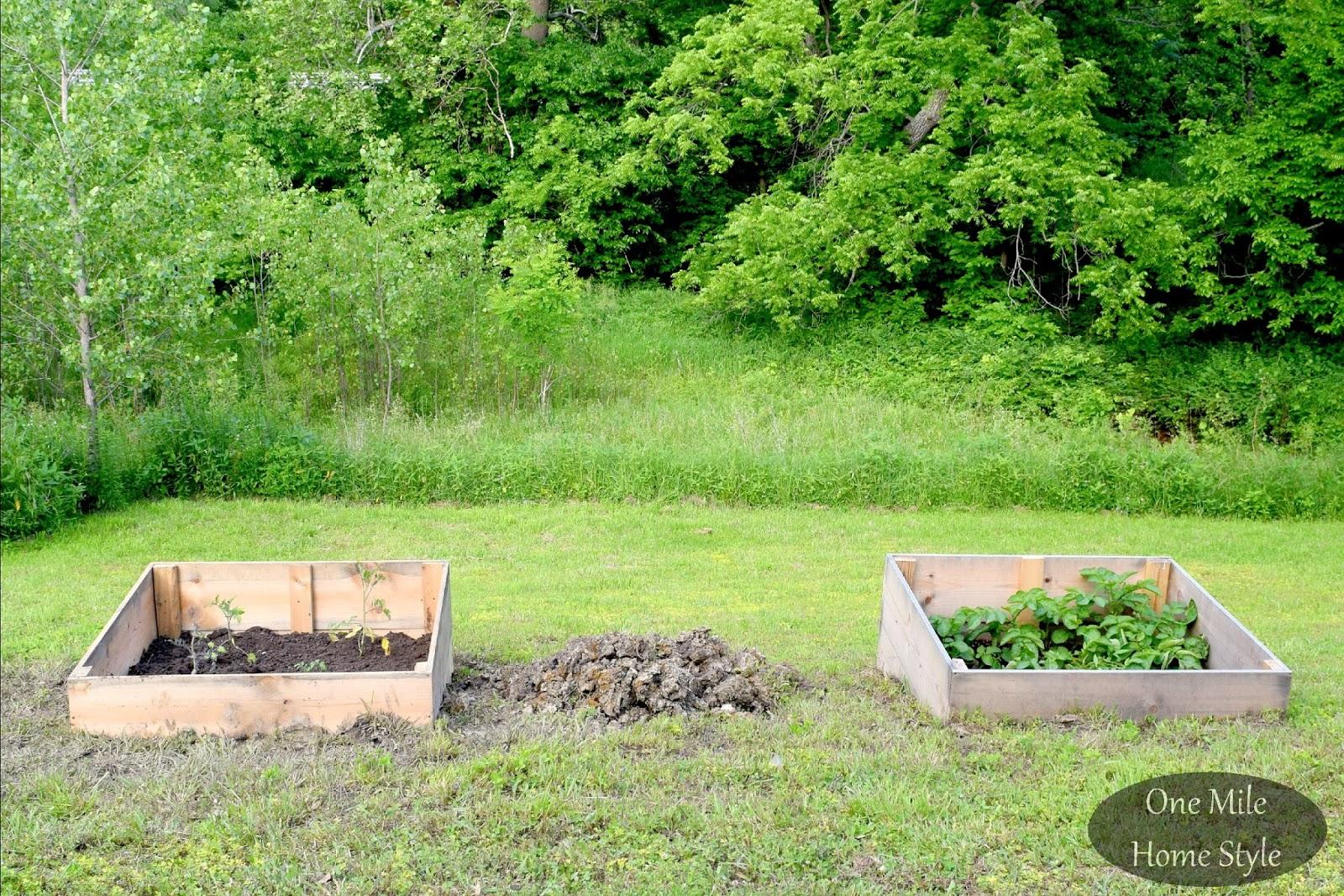 Hillside Garden Boxes   Raised Bed Gardening On A Hill