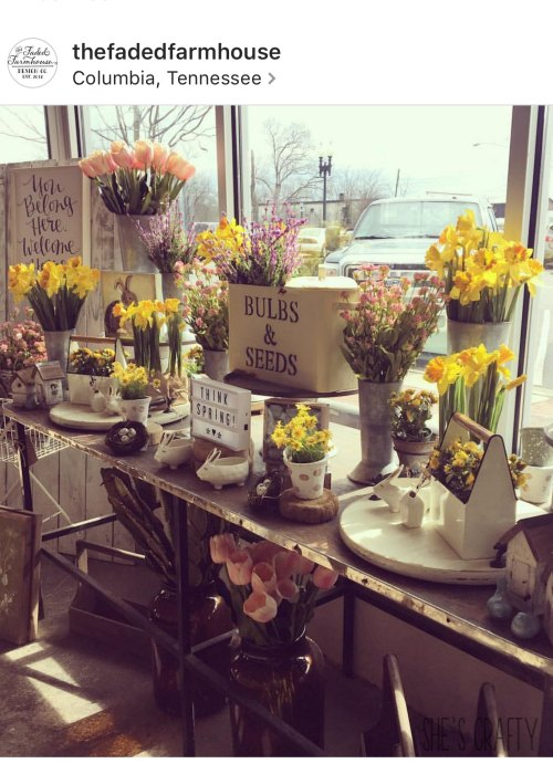 flowers, pots, spring, vintage, tulips