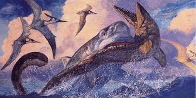 gambar hiu megalodon asli