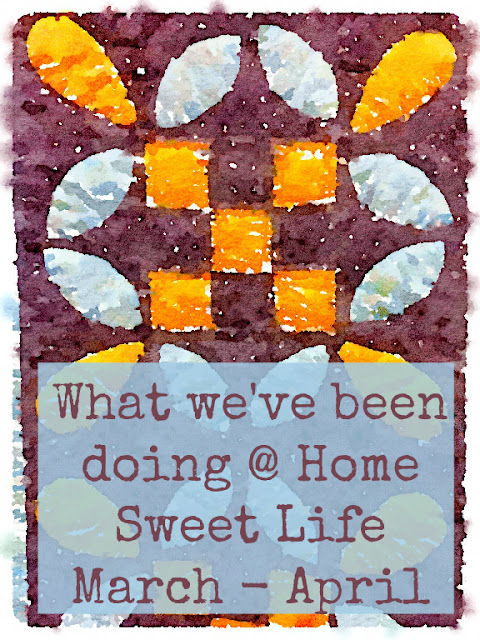 weekly homeschool wrap-up, homeschooling high school