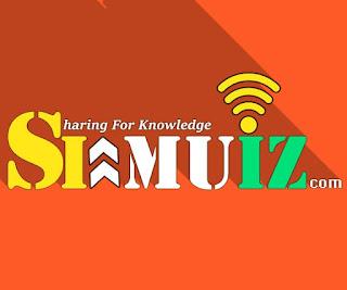Logo Blog Simuiz.com