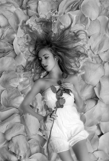 Extrait de pétales de roses