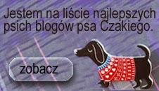 psie blogi czakiego lista