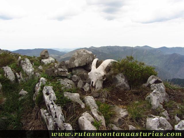 Cima de Peña Sobia, entre Teverga y Quirós