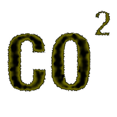 Pengaruh Gas CO2 Terhadap Tanaman