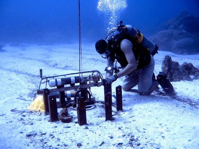 10 Manfaat Laut Bagi Kehidupan Manusia