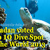 Pulau Sipadan in World Top 10 Dive Sites