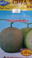 Budidaya, Tanaman, Petani,perawatan mudah, rasa manis, daging keras, kulit bernet, action, Action 434, Cap Kapal terbang, Harga murah, Benih, Bibit