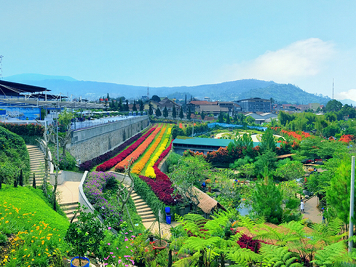 Lokasi Dantiket Masuk Wisata Rainbow Garden Lembang