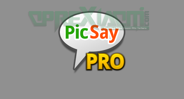Download Aplkasi PicSay Pro Photo Editor Apk Update Terbaru