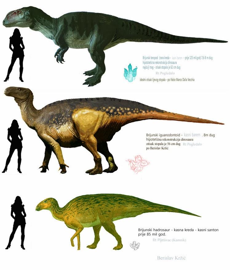The Mesozoic Eras Deadliest Dinos | Prehistoric animals
