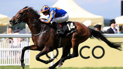 Order of St George, Aidan O'Brien,