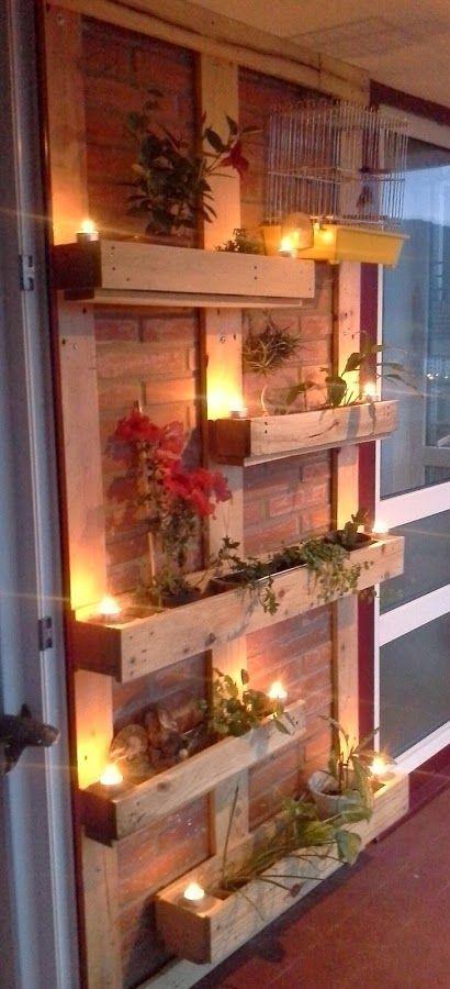 Jardín vertical, ideal para dar vida a tus paredes