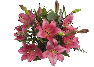 LA Hybrid lilies for Valentine's Day