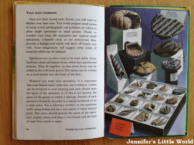Ladybird book Prehistoric Animals and Fossils