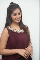 Nikki Galrani in a Brown Shining Sleeveless Gown at Nakshatram music launch ~  Exclusive 062.JPG