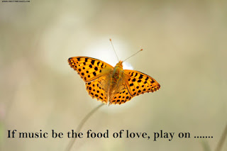 If music be the food of love, play on, bülent boz