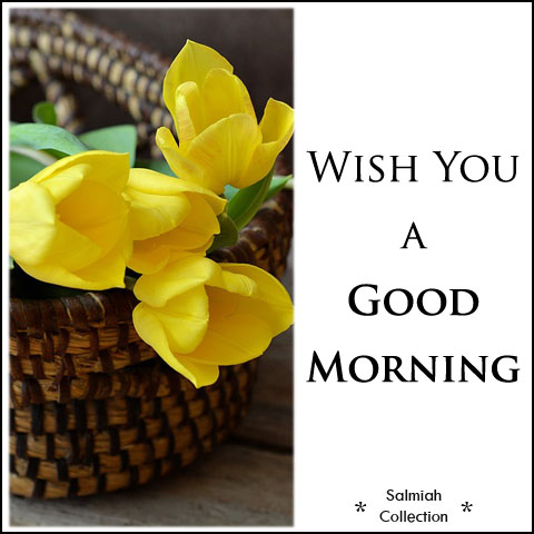 Wish you have a wonderful day!