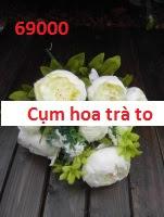 Phu kien hoa pha le o Tay Mo