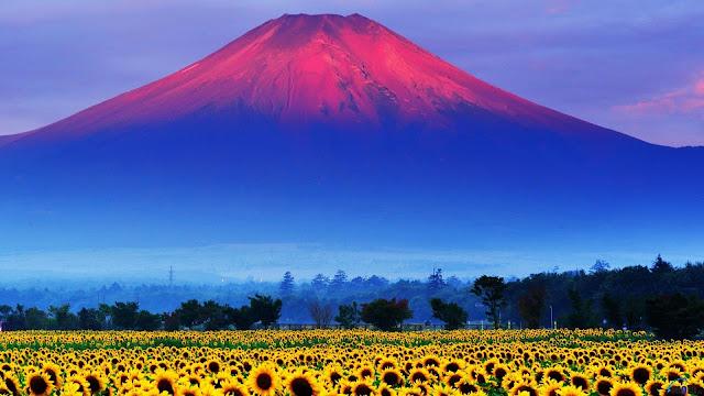 79 Fakta Jepang Yang Menarik dan Seru Untuk Dibaca yang dapat menambah wawasanmu
