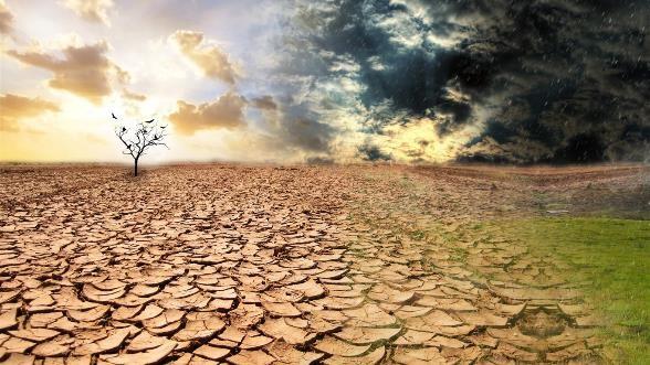 dia mundial de la lucha contra la desertificacion y la sequia
