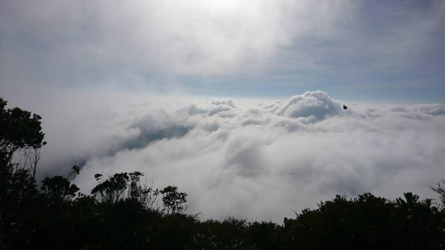 Pergunungan Yong Yap