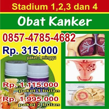 http://stopkanker1.blogspot.com/2015/02/obat-tumor-ganas.html