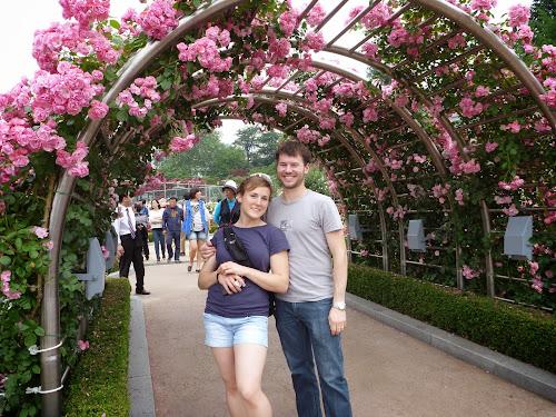 Rose Garden - Chosun University