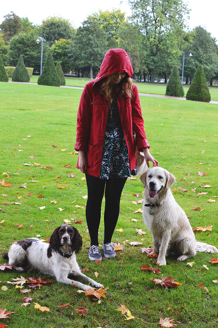 Dog Walking Dates in Glasgow | Colours and Carousels - Scottish Lifestyle, Beauty and Fashion blog