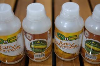 cara menyembuhkan bronkitis secara herbal