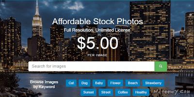كيف-تربح-من-بيع-الصور-علي-موقع-Markedshot