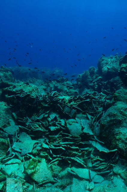 Eight Roman era shipwrecks discovered off Greek island of Naxos