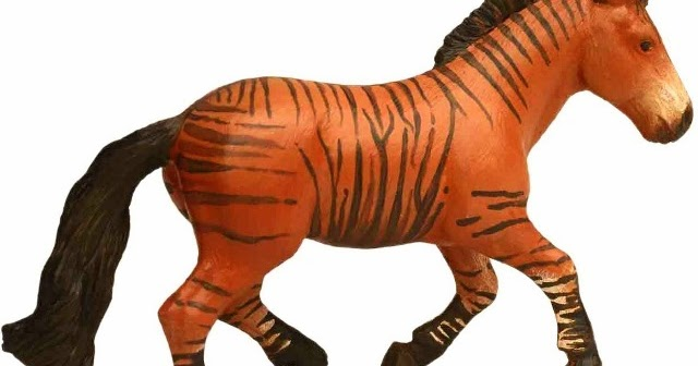 Zorse For Sale >> Flame24soul Blogspot Com Zorse Zebroid Zorses A Zebra Horse