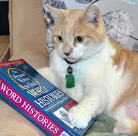 Cream and white tabby cat posing with a dictionary