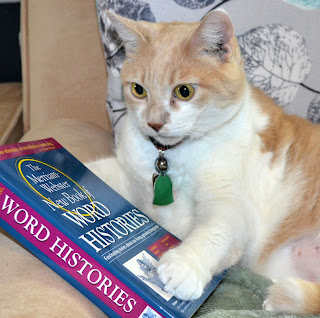 Webster (cat) poses with a book.