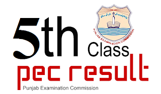 5th class result 2016