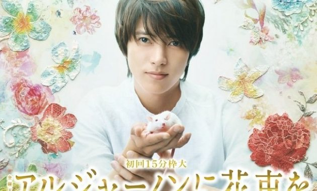 Download Drama Jepang Algernon Ni Hanataba O Batch Subtitle Indonesia