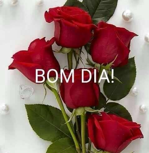 Mensagem De Bom Dia Com Flores Vermelhas Reflexão Da