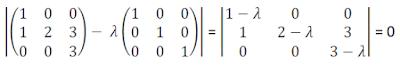 Cálculo de polinomio característico de matriz 3x3