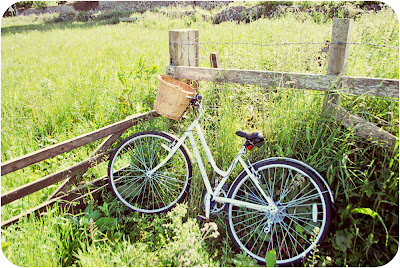 Basket and bicycle