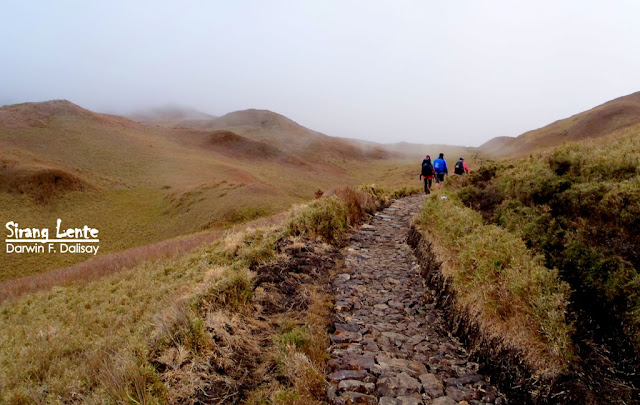 mt pulag package