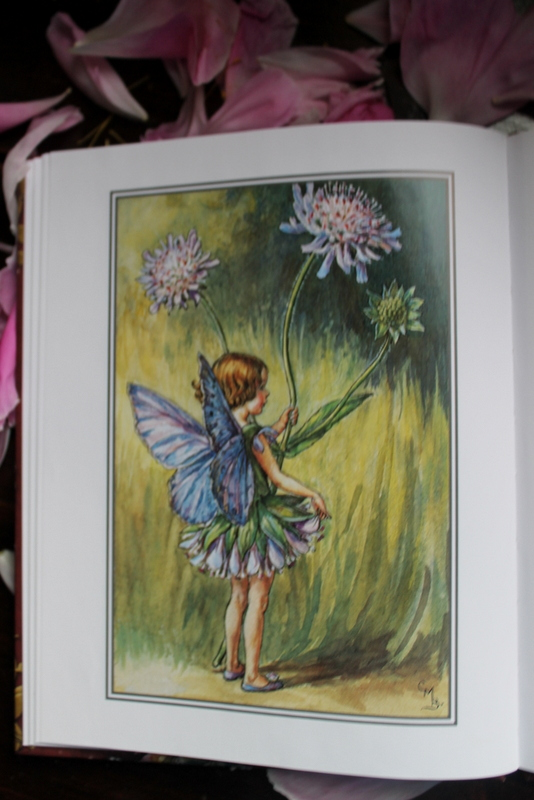Books and Umbrellas: Flower Fairies of the Summer by Cicely Mary Barker