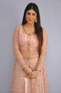Actress Aditi Singh Latest Stills in Designer Dress at Guppedantha Prema Pressmeet 0002.jpg