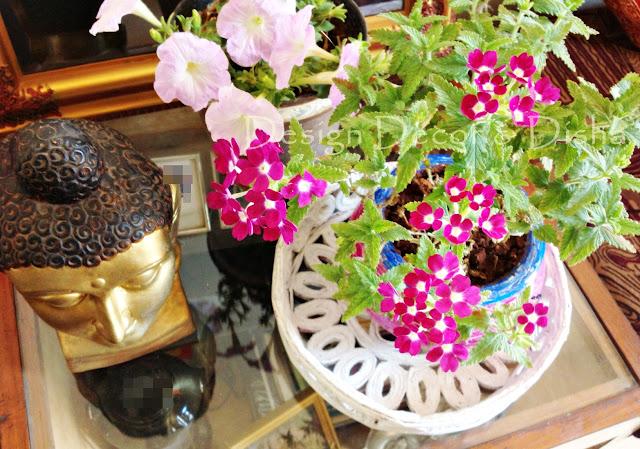 http://designdecoranddisha.blogspot.com