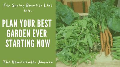 Plan you best garden in December Checklist